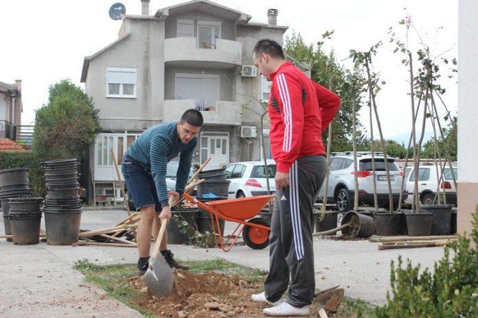 Na poziv građana sadili stabla na Zabjelu